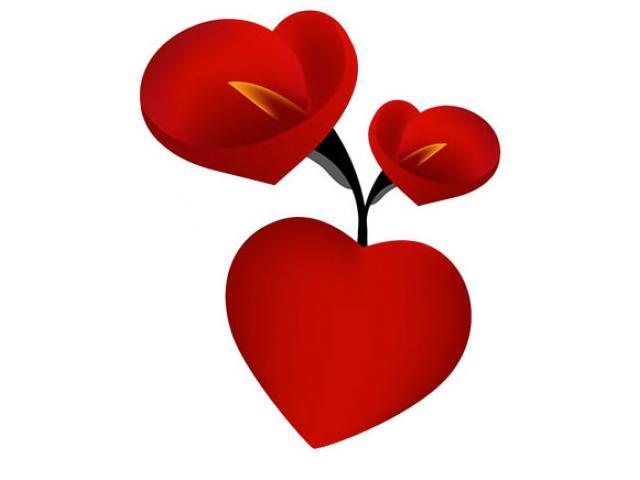 San Valentín | El mejor regalo al mejor precio
